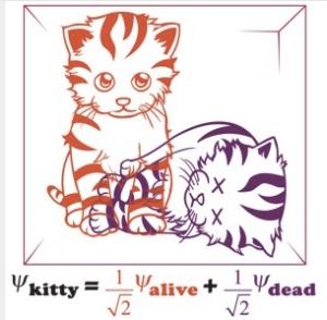 dead cats
